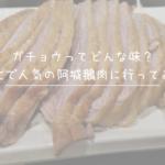 ガチョウってどんな味?台北で人気の阿城鵝肉に行ってみた